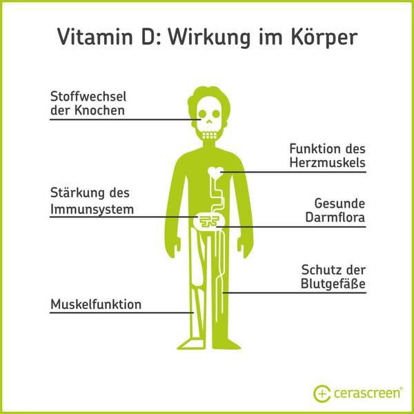 Vitamin D - Wirkung im Körper