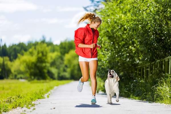 Joggen im Frühling mit Hund