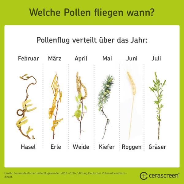 Welche Pollen fliegen wann?